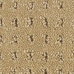 Aerosteam Carpet Selection Guide - Loop Pile Carpet